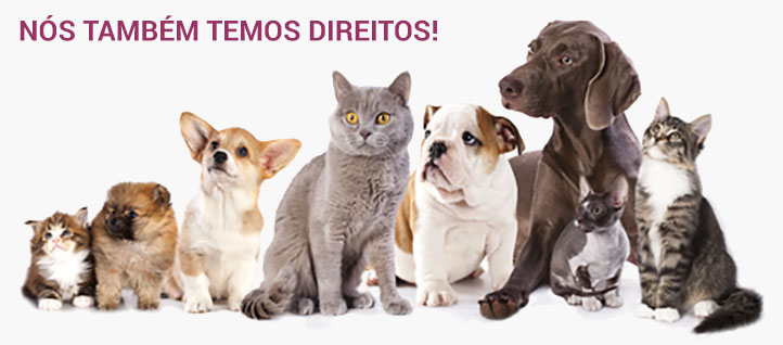 Declaração Universal dos Direitos do Animal